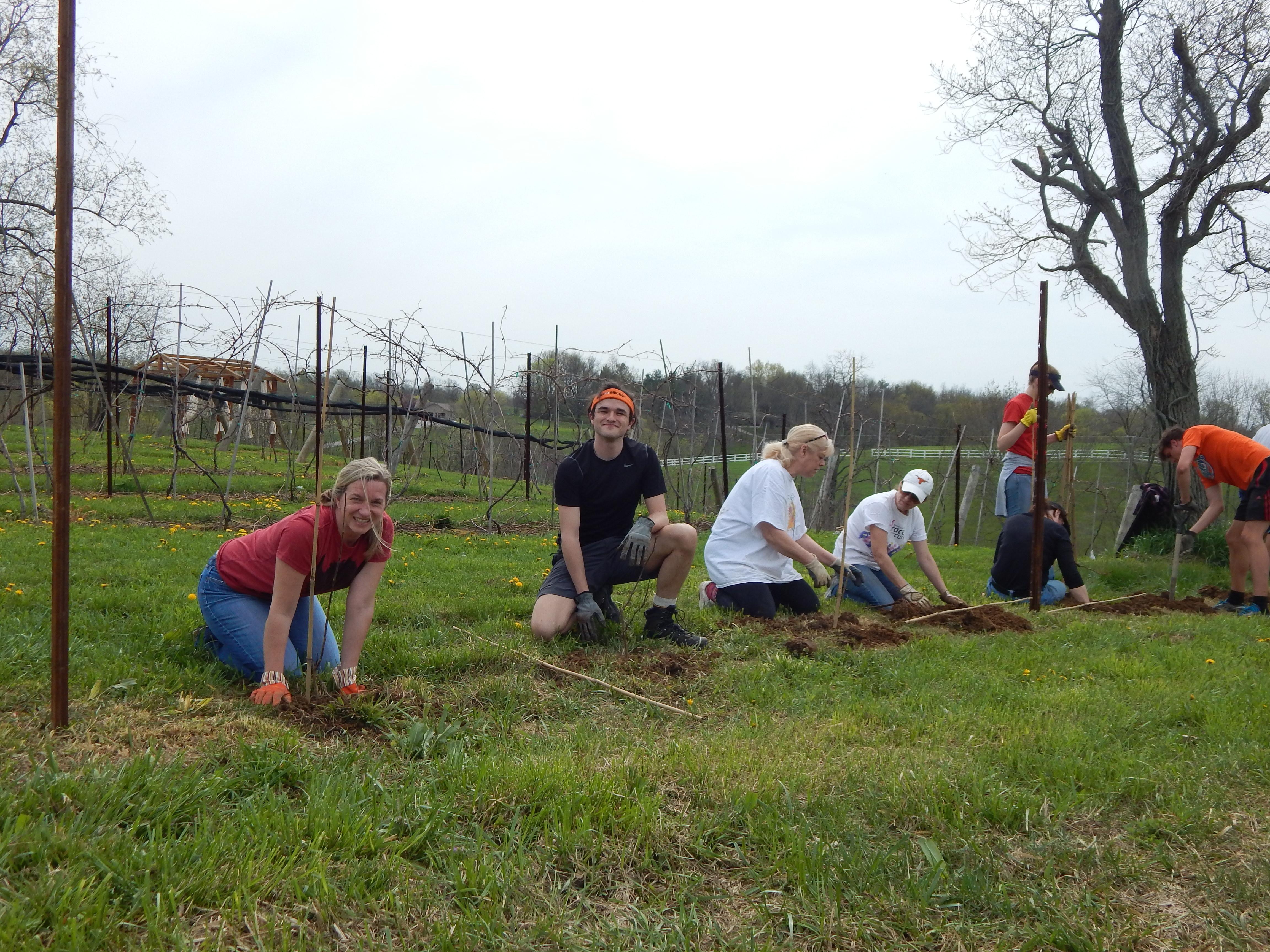Brianza Farm Day