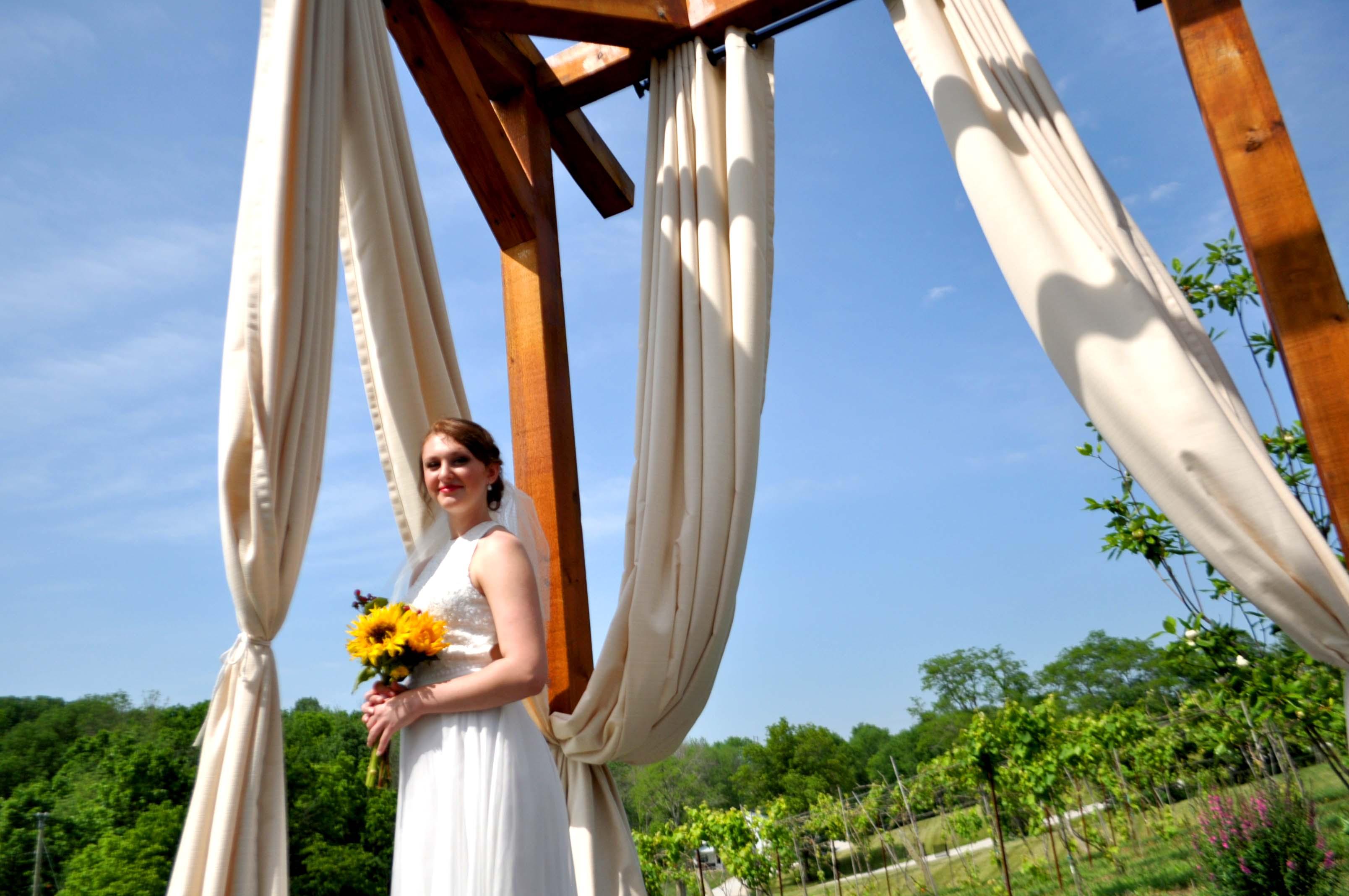 Bride under gazebo horizontal