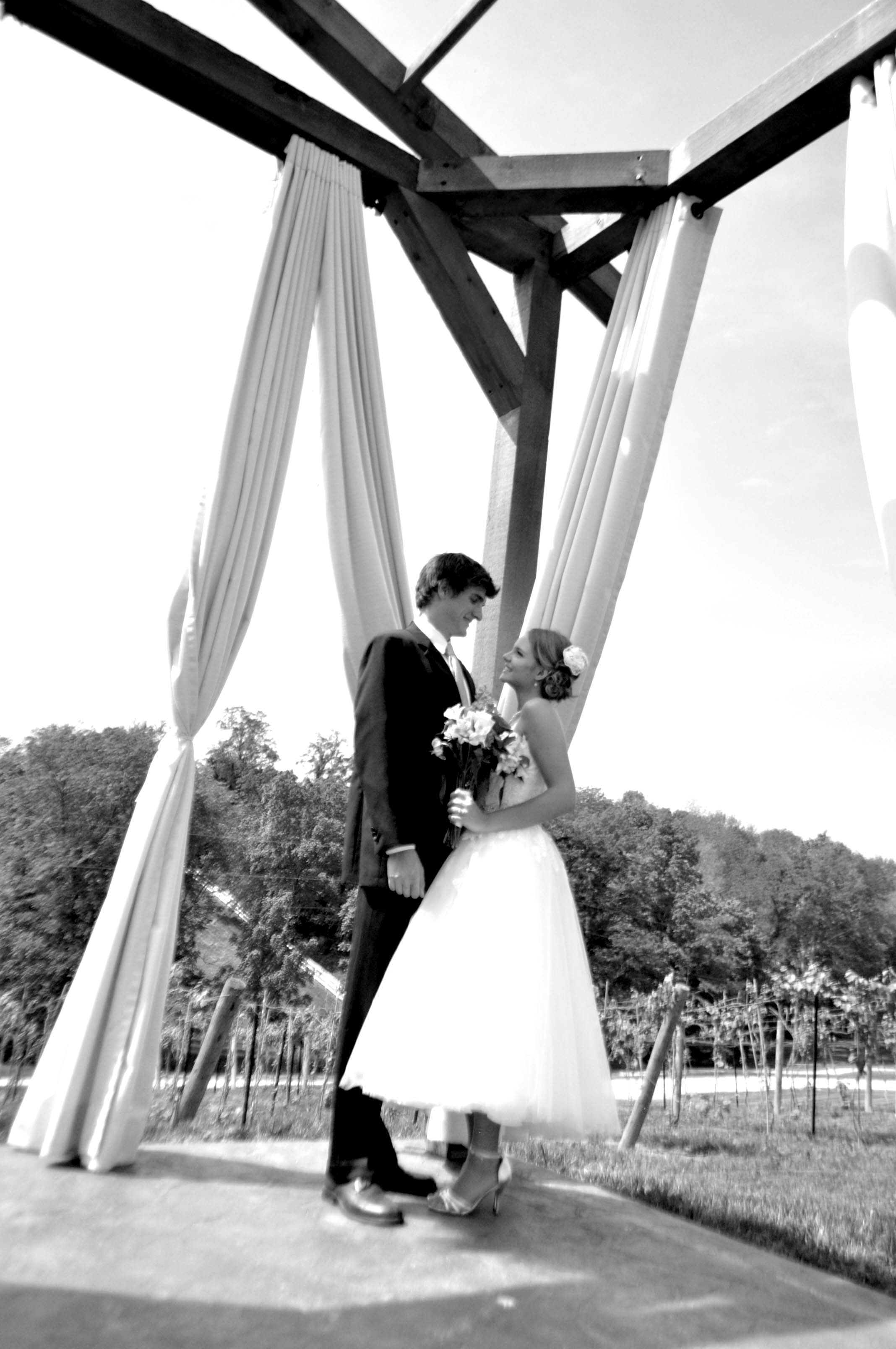 Couple under gazebo in black and white
