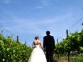 Wedding Couple in Vineyard Walking