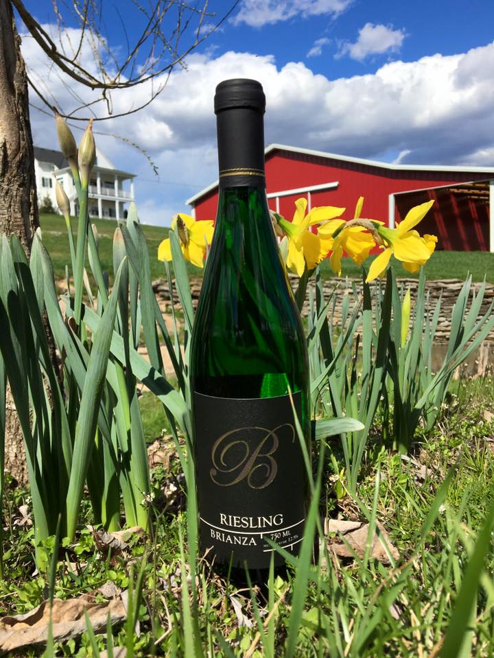 Dry Riesling 2016 Green