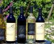 Vineyard & Winery Tour