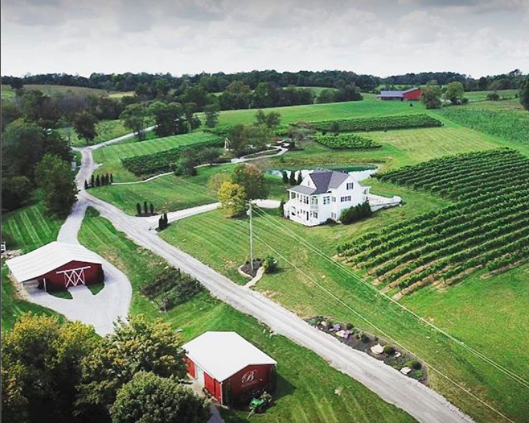 northern Kentucky winery