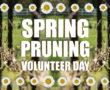 Spring Pruning Volunteer Day