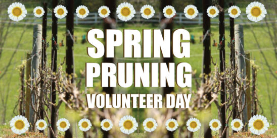 Spring Pruning Volunteer Day